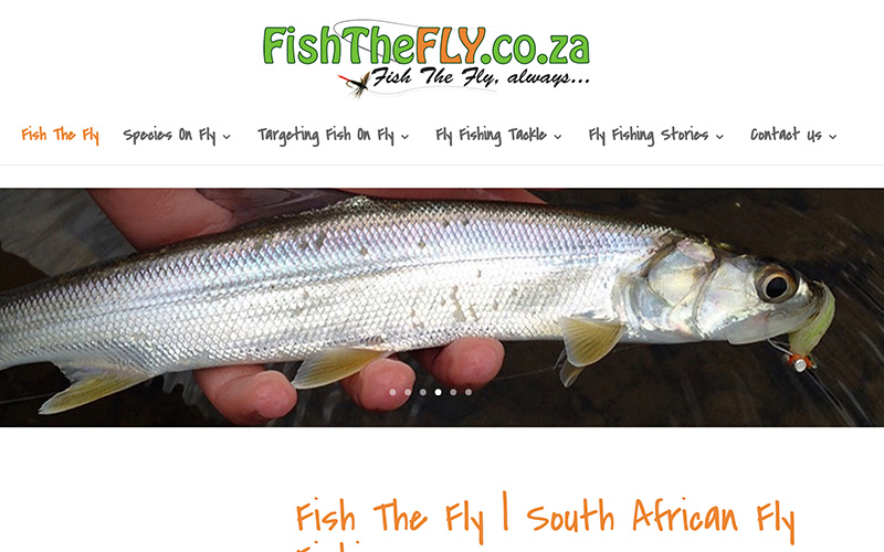 Fish The Fly Co Za Website
